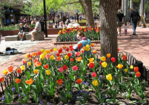 April Events in Boulder