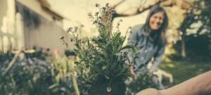 Gardening in Boulder