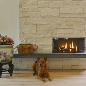 Fireplace Dog Alt